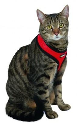 Postroj ACTIV pro kočku s vodítkem