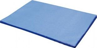 Desinfekční matrace 85x60x3cm plné dno