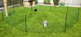 Síť ohradníku pro králíky, výška 65 cm