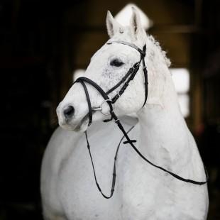 Uzdečka HORZE Pony kožená