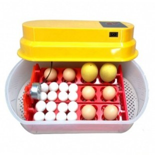 Automatická líheň WQ-12 na 12 vajec
