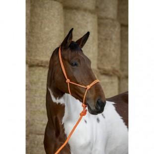 Provazová ohlávka s vodítkem pro koně NORTON Fluo 3/full