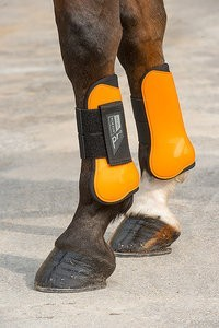 Chrániče NORTON Pro Plus pony 4ks