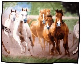 Deka HKM fleecová 135x160cm motiv stádo koní