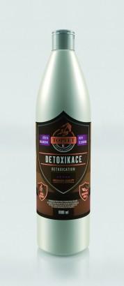 TOPVET Sirup Detoxikace