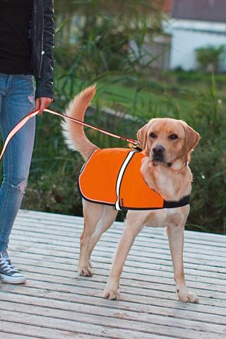 Bezpečnostní vesta MAXI SAFE LED pro psa  - 5