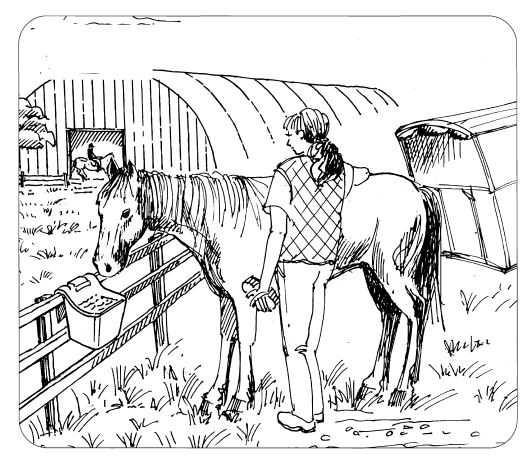 Žlab závěsný OK PLAST mobilní pro koně 13ltr.  - 3
