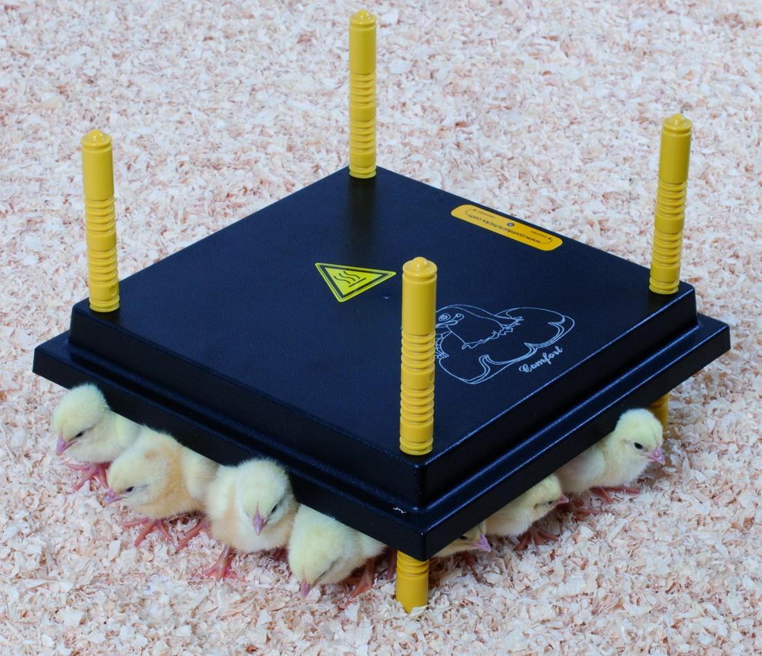 Výhřevný panel HEN pro kuřata 13W  - 1