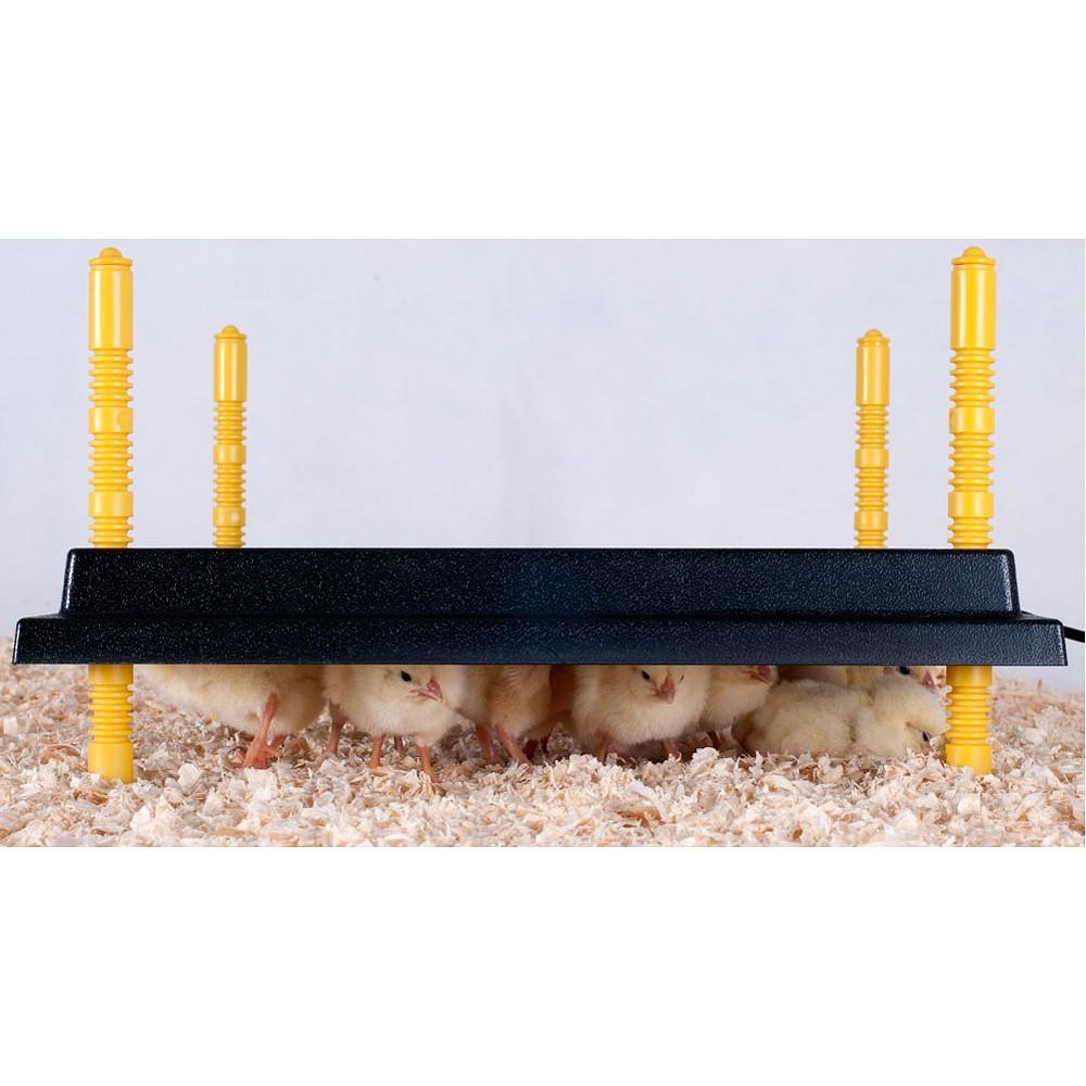 Výhřevný panel HEN pro kuřata 13W  - 2