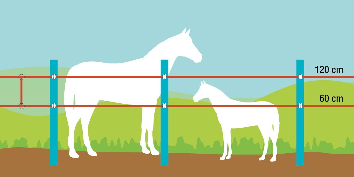 kone a hribata